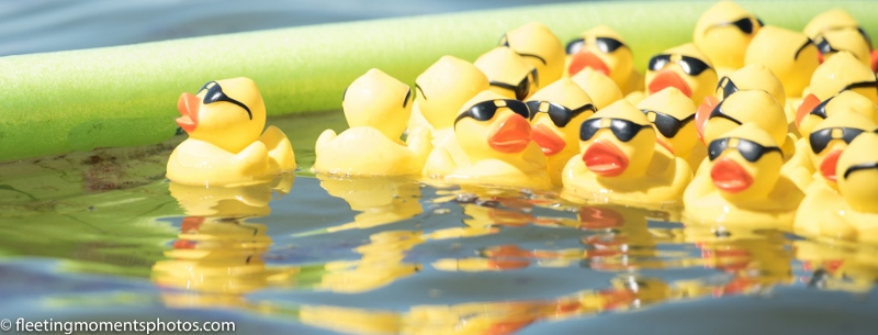 2019 Rubber Duck Regatta
