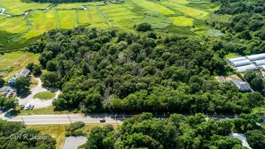 Tobey woodlands, aerial photo