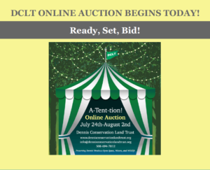 Graphic for online auction